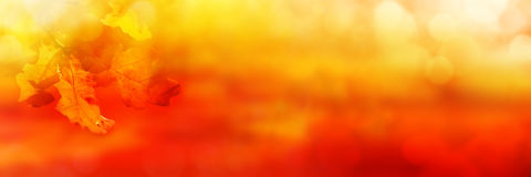 Abstract orange colored autumn background Stock Photo