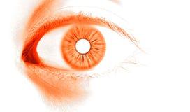Abstract  orange eye. Flourescent orange eye on focus Royalty Free Stock Photo