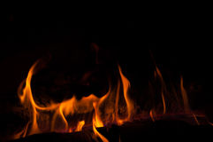 Abstract orange fire horns Stock Image