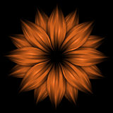 Abstract orange flower on black background Royalty Free Stock Images