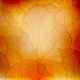 Abstract orange vintage background Stock Photo