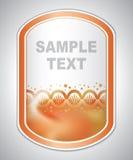 Abstract oranje laboratoriumetiket stock illustratie
