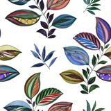 Abstract ornament. Colorful illustration. Watercolor drawing of leaves of different colors. Leaves and branches for design. stock illustration