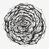Abstract ornamental rose Royalty Free Stock Images