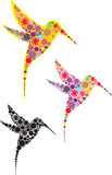 Abstract ornate hummingbirds  set. Abstract ornate hummingbirds  illustration set Royalty Free Stock Photography