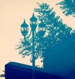 Street Lamp Reflection Stock Photography