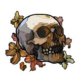 Abstract outline skull with flowers Stock Images