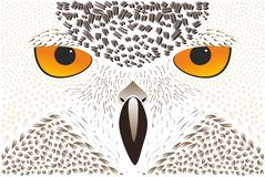Abstract owl background Stock Images