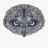 Abstract Owl. Vector Illustration Stock Photos