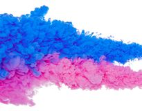 Abstract paint background color of blue and pink ink splash in the water isolated on white background stock photography