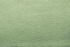 Abstract painted textures of skin green color Stock Photos