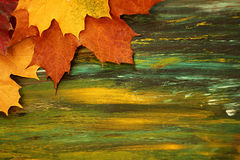Abstract painting background with autumn leaves Royalty Free Stock Photography