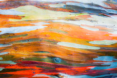 Abstract painting by eucalyptus tree bark Royalty Free Stock Images