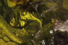 Abstract painting. Green lizard Stock Image