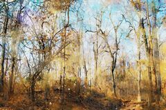 Abstract painting of trees in forest in fall season, nature in autumn landscape image, digital watercolor illustration, art for