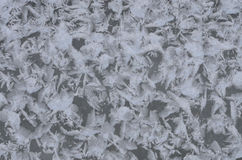 Abstract Paintings On Iced River Surface Royalty Free Stock Images