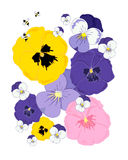 Abstract pansies Stock Images