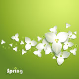 Abstract paper flowers. With green bubbles Stock Photos