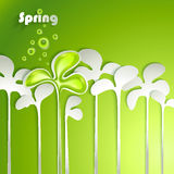 Abstract paper spring plants Royalty Free Stock Photos