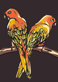 Abstract parrots, stylized animal. Motley multicolored birds in graphically style sitting on a branch, isolated on a Stock Photography