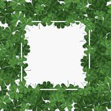 Abstract patrick day background with clover. Vector illustration Royalty Free Stock Image