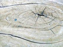 Abstract patronen en licht op oud hout Royalty-vrije Stock Fotografie