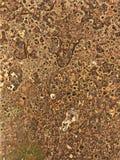 Abstract patroon als achtergrond voor wallapaper Royalty-vrije Stock Afbeelding