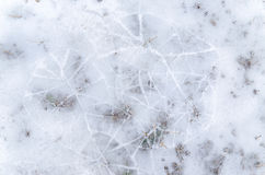Abstract patroon in de winter Stock Fotografie