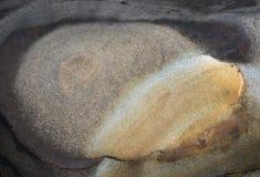 Abstract patroon van kleurrijke rots Royalty-vrije Stock Foto