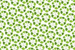 Abstract patroon van natuurlijke gele ginkgobladeren in cirkels Royalty-vrije Stock Afbeelding