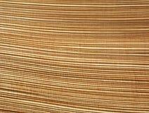 Abstract patroon van palmschors Royalty-vrije Stock Afbeeldingen