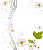 Abstract pattern with cherry flowers stock illustration