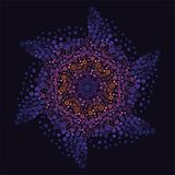 Abstract, pattern, fractal, blue, flower, illustration, pink, mandala, graphic, decorative, purple, digital, christmas, green, psy. Floral Arabesque on black vector illustration