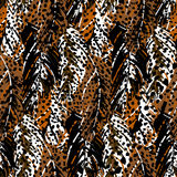 Abstract pattern inspired by tropical birds Royalty Free Stock Photography