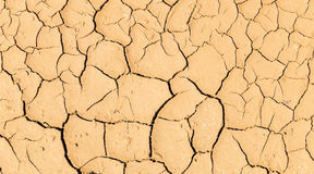 Abstract Pattern Line of Natural Cracked Ground in Countryside with Light Brown Soil Color Background Texture Stock Image