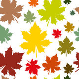 Abstract pattern with maple leaves. Seamless pattern with maple leaves Stock Image