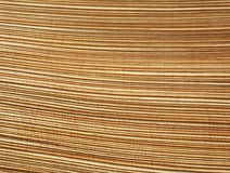 Abstract pattern of palm bark Royalty Free Stock Images