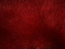 Abstract pattern - red grass stock illustration