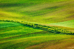 Abstract pattern of rolling fields Stock Photography