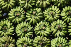 Abstract Pattern from stored bananas Stock Image