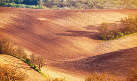 Abstract pattern texture of rolling wavy fields in spring. Sprin. G tillage soil. Arable land on hills. Moravia, Czech Republic Stock Photography