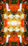 Abstract patterns Stock Photography