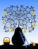 Abstract pear tree Royalty Free Stock Photography