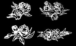 Abstract peonies and roses isolated on black background. Hand drawn floral collection. 4 floral graphic elements. Big vector set. Outline icons stock illustration