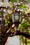 Abstract photo of antique street lantern among tree branches. vintage filtered image with glitter lights Royalty Free Stock Images
