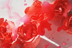 Abstract photo of blurred and stain painted rose flowers on white background Royalty Free Stock Images
