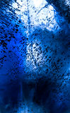 Abstract photo deep sea underwater world Stock Photography