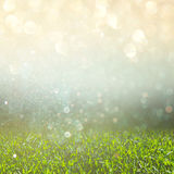 Abstract photo of fresh grass field and bright bokeh lights. cross proccess effect Royalty Free Stock Photo