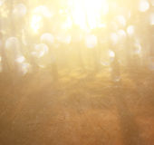 Abstract photo of light burst among trees and glitter bokeh lights. filtered image and textured Stock Photo