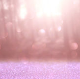 Abstract photo of light burst among trees and glitter bokeh lights. image is blurred and filtered Stock Images